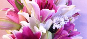 Florescence liliums
