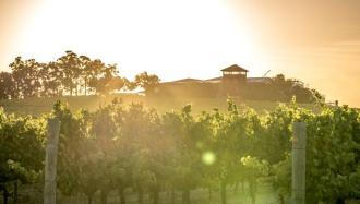 Ferngrove Frankland River Wines